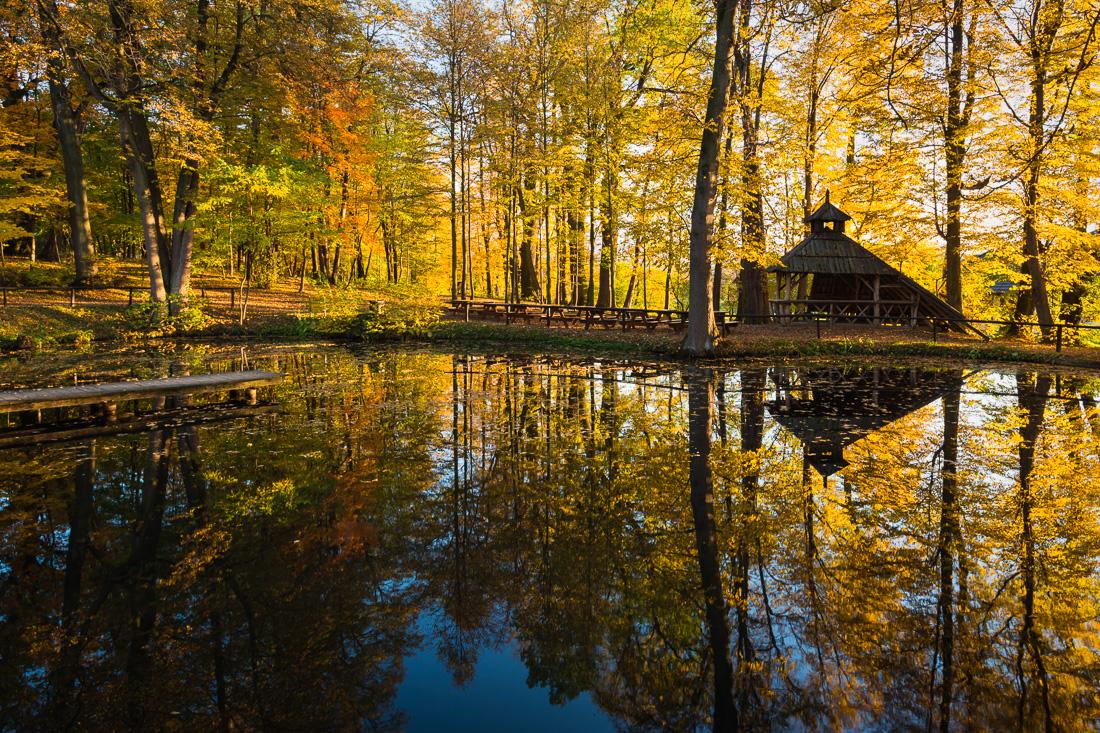 Park Zarembów, Sądecki Bartnik, gmina Grybów