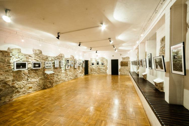 Trees-Shadows-Dreaming exhibition virtual tour