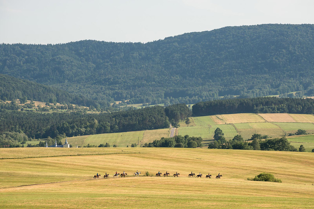 Horse riding - photoreportage. Click for more